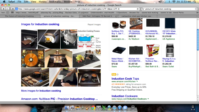 http://www.google.com/search?client=safari&rls=en&q=picture+of+induction+cooking&ie=UTF-8&oe=UTF-8